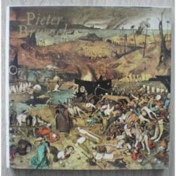 Neumann Jaromír - Pieter Bruegel